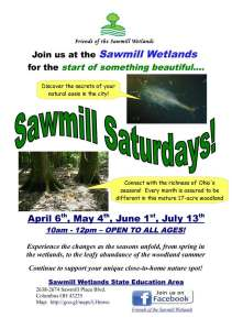 Please join us on the first saturday of the month to explore the Sawmill Wetlands.
